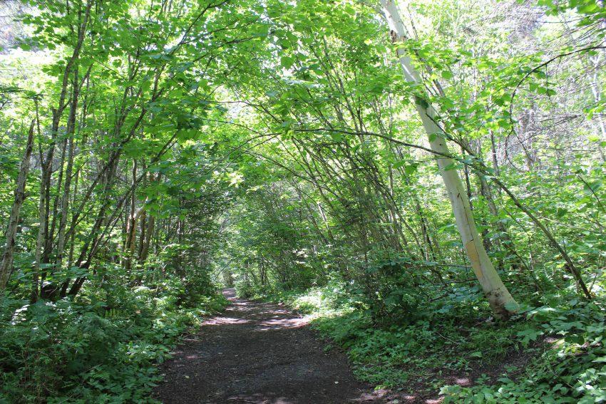 L'explot-canot familial et le sentier écologique